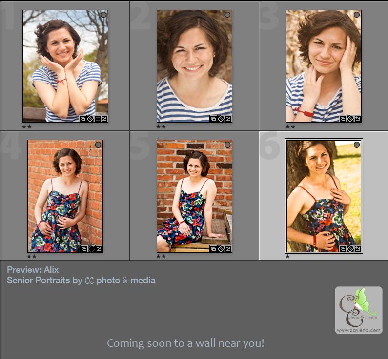 Senior Portrait preview